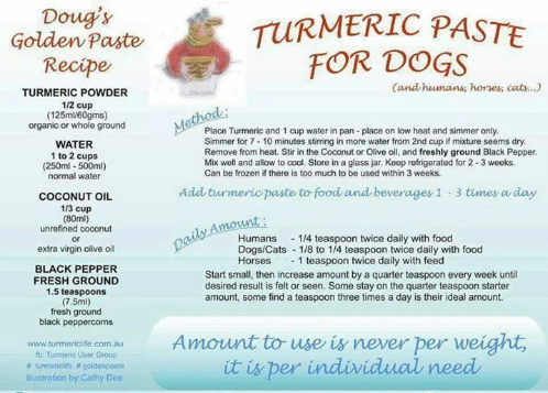 dougs-turmeric-paste-golden-paste-for-dogs-recipe-and-humans-7515606